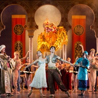 Houston Ballet Aladdin February 2014 Karina Gonzalez and Joseph Walsh choreographed by David Bintley 4