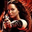 The Hunger Games Catching Fire official movie poster November 2013 DETAIL