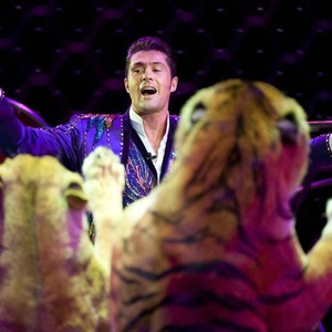 Blood at the Houston circus: Tiger trainer gets clawed, finishes act - CultureMap Houston