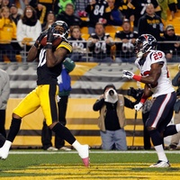 Steelers Texans touchdown