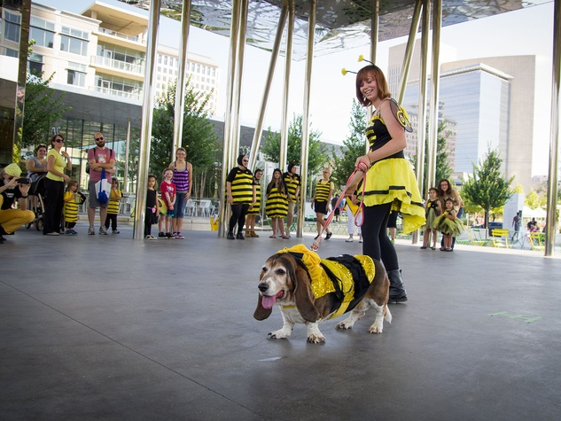 Photo of bee activists and dog in costume