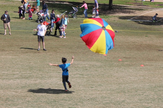 200 Hermann Park Kite Festival March 2014