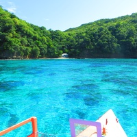 Stephan Lorenz Tobago travel February 2015 The prefect waters for snorkeling off Little Tobago