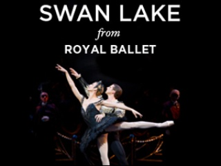 Austin Photo_Events_Swan Lake_Poster