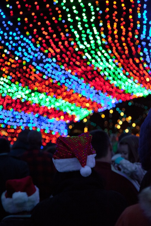 Austin Photo Set: Pages_trail of lights_dec 2012_14