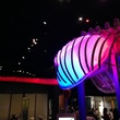 The World's Largest Dinosaurs at the Perot Museum