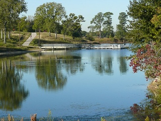 Pearland park piranha may be just the beginning invasive for Tom bass park fishing