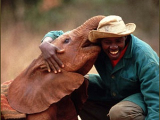 Austin Photo_Events_David Sheldrick Wildlife Trust_Poster