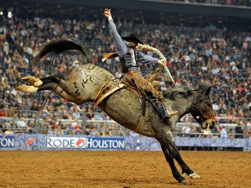 Slideshow Big Time Clout Houston Rodeo Earns A Walt