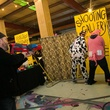 Shooting gallery at Meat Fight 2014