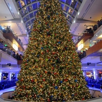 25th Annual Ice Spectacular & Tree Lighting