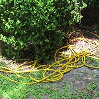 News_Katie_a water hose rogue_May 2012_3 _yellow water hose waggery.jpg