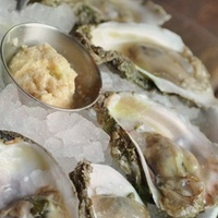 Liberty Kitchen Bar oysters on ice