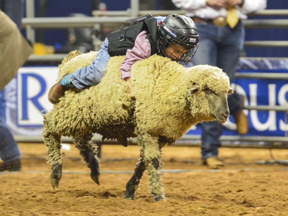 19 RodeoHouston Rodeo champions March 2014 mutton bustin'