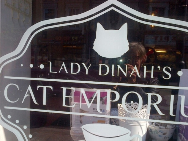 Lady Dinah's Cat Emporium Jane Howze