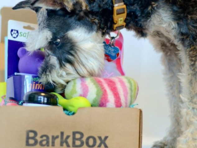 All BarkBoxes are animal approved