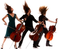 Cello Fury, press photo, hair