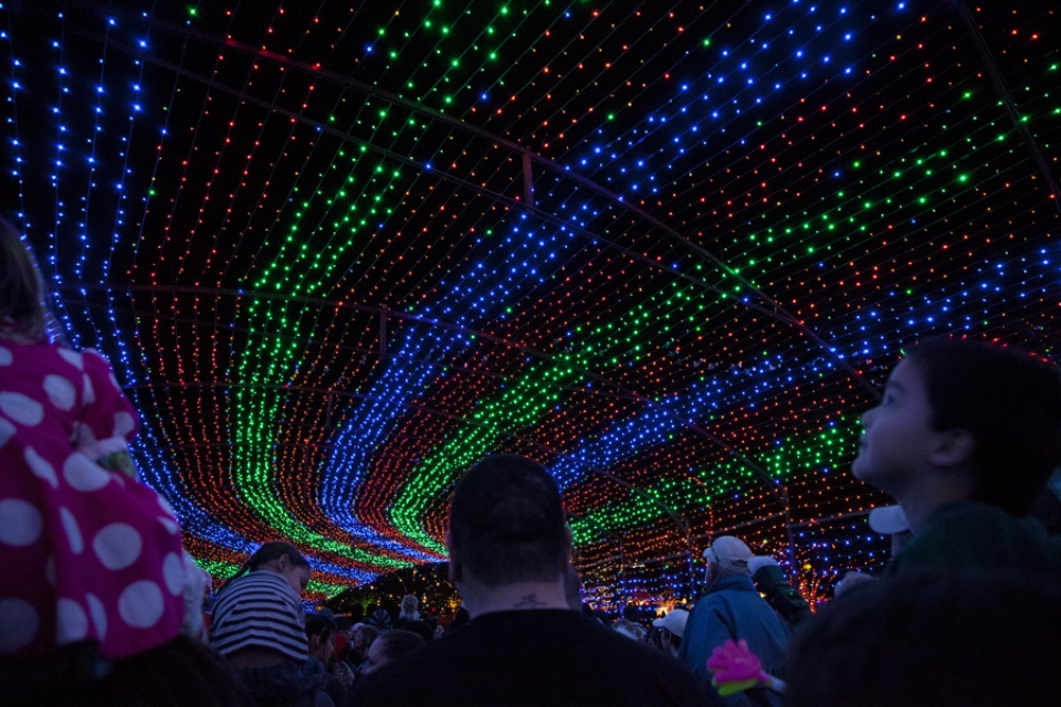 Austin Photo Set: Pages_trail of lights_dec 2012_13