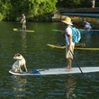 paddleboarder with dog on lake austin for Tyler's Dam that Cancer