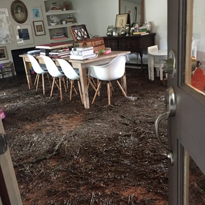 Storm aftermath 1 400 homes damaged in houston as clean for Cleaning out house after death