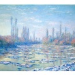 MFAH Claude Monet May 2014 - The Floating Ice