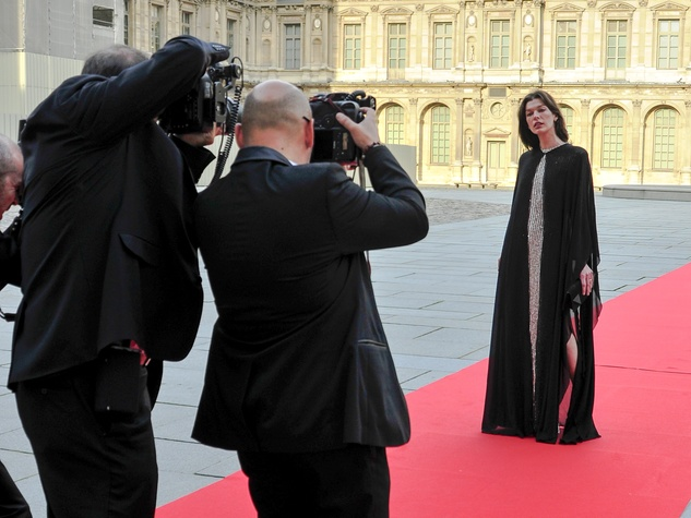 Milla Jovovich at Louvre gala June 2013