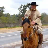 Austin Photo Set: News_Shelley Seale_Chile_September 2011_man on horse