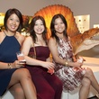 011_Houston Museum of Natural Science, LaB 5555, June 2012, Marianne Sison, Erica Rendon, Julie Nguyen.jpg