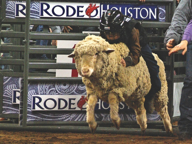 Yee Haw Houston Rodeo Sets Attendance Records