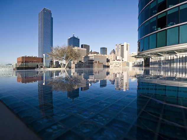 Omni Dallas pool