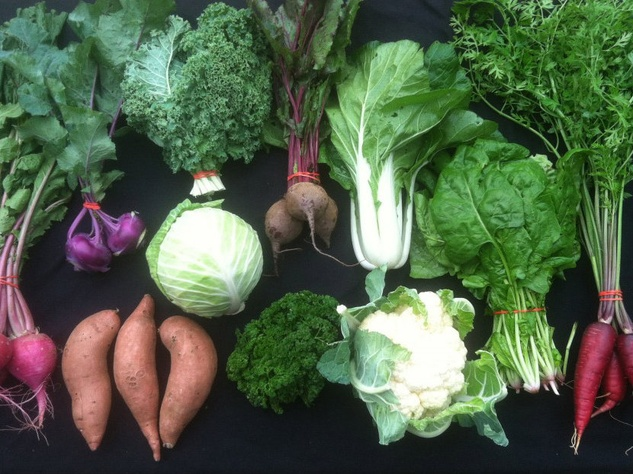 Johnson's Backyard Garden CSA Box Gift Guide