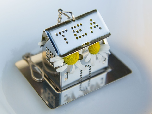 Photo of chamomile flowers in tea infuser