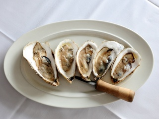 News_Brasserie 19_oysters