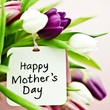 News_Happy Mother's Day_tulips_flowers