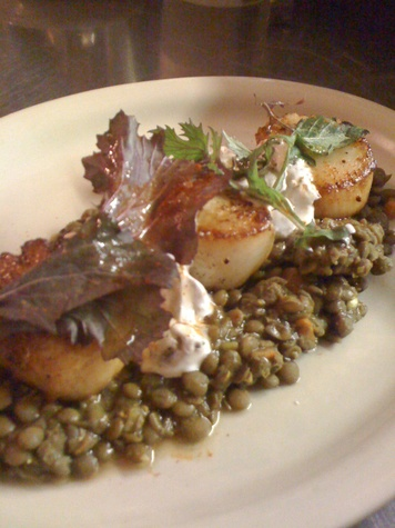 News_Roost_organic curried lentils_diver scallops_grape raita