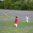 News_Ruthie_Brenham and Bluebonnets_Bluebonnet Field