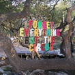 Austin's Enchanted Forest is for sale