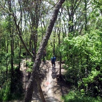 Austin photo: places_outdoors_walnut creek park_trail
