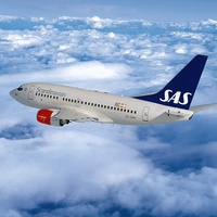 Scandinavian Airlines jet in sky