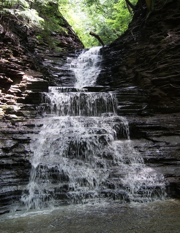 Chestnut Ridge Park waterfall