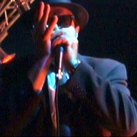 Pocket Full of Soul, harmonica documentary, February 2013, Blues Brothers Band