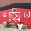 Go Texan Day February 2014 barn photo setup
