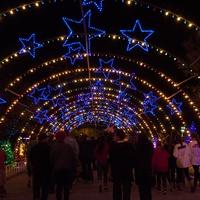 Austin Photo Set: Pages_trail of lights_dec 2012_10