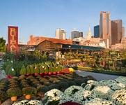 Ruibal's Plants of Texas in Dallas Farmers Market