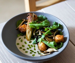 Gardner_Austin restaurant_gnuddi with mushrooms_2015