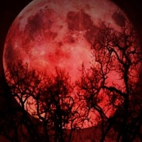 Blood moon in Dallas, Texas