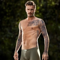 David Beckham H&M Bodywear underwear (File photo)