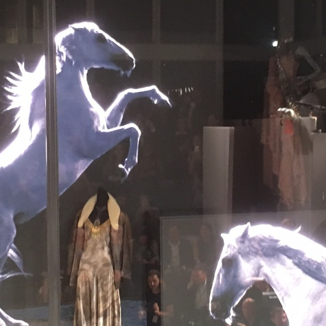 Ralph Lauren store window with video horses