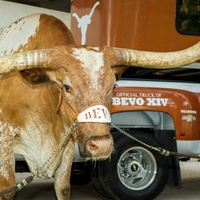 Chevy Silverado Bevo Offical Truck of UT