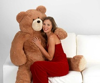 Teddy Bear, Valentine's Day, model